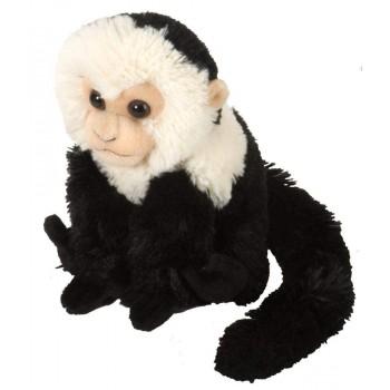 Scimmia Cappuccino 20 cm....