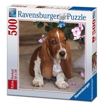 500 pz. Cuccioli di Basset...