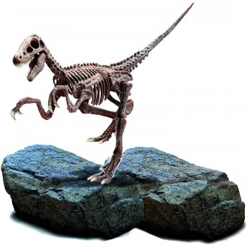 Super  Kit  Velociraptor  -...