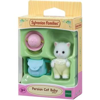 Bebè    Gatto  Persiano-...