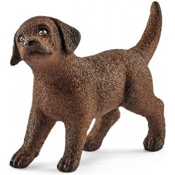 Cucciolo di Labrador...